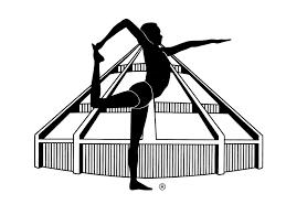 Iyengar yoga-merket